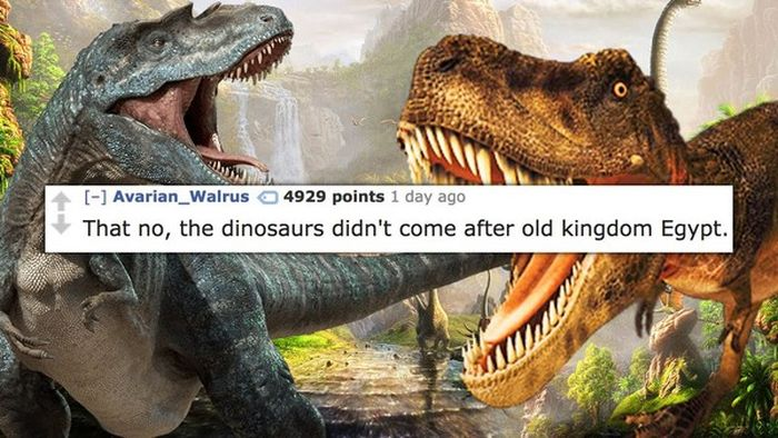 The Stupidest Things People Had To Explain To A Fully Grown Adult (15 pics)