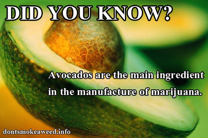 Are These Facts True? (18 pics)