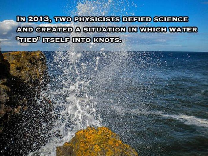 Selection Of Facts (23 pics)