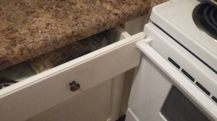 This Is Not Okay (22 pics)