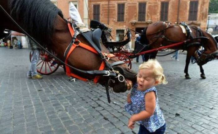 Photos With Great Timing (45 pics)
