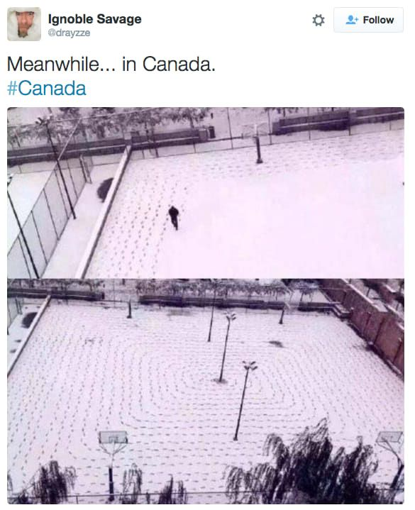 Meanwhile In Canada (21 pics)