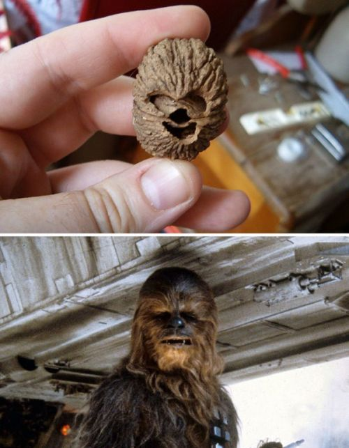 Pop Culture Figures Hiding In Everyday Objects (17 pics)