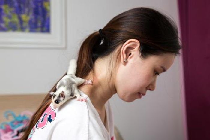 Chinese Pets (16 pics)