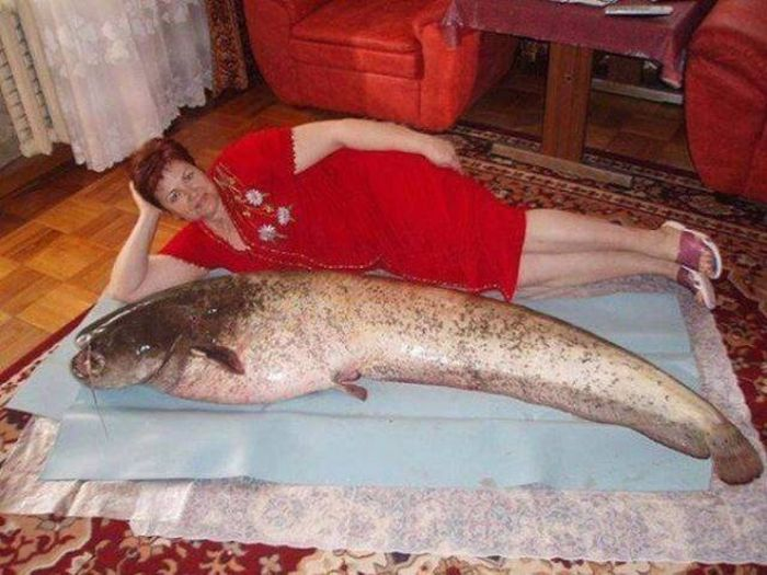 WTF Photos (31 pics)