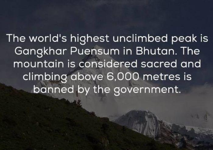 Interesting Facts (24 pics)