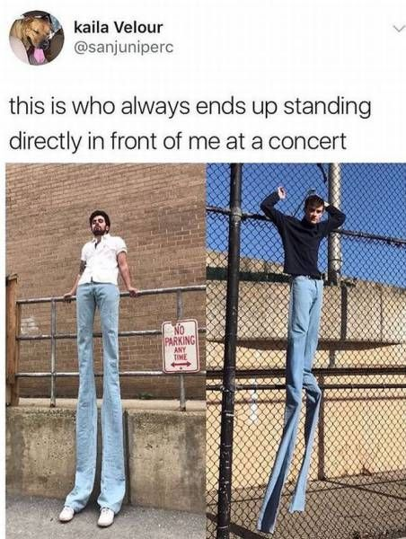 So True (41 pics)