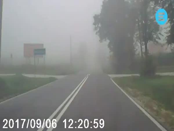 Train Appears Through The Fog