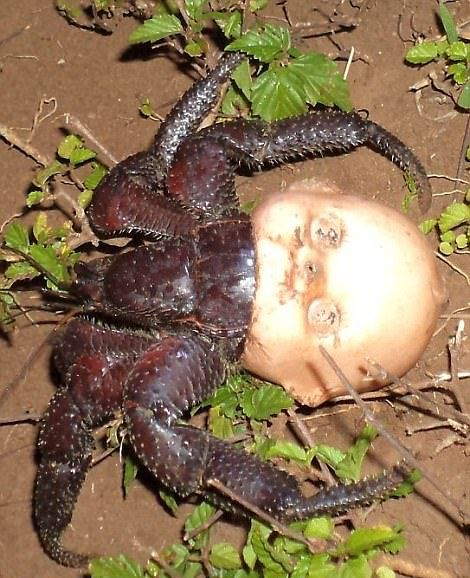 Nature Can Be Scary (19 pics)