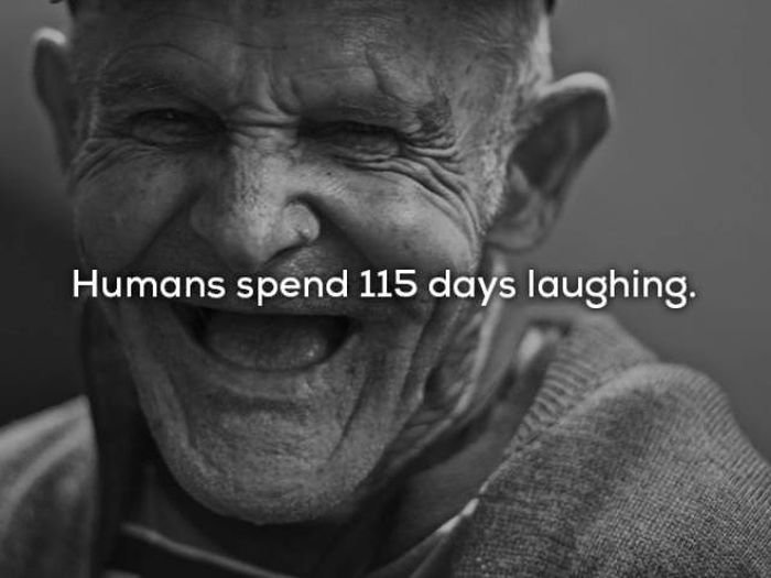 Your Life Could Easily Be Put Into Numbers (17 pics)