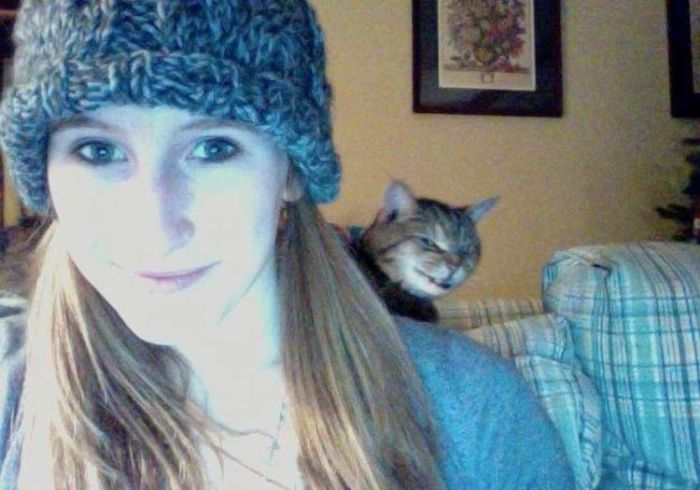 Cats That Ruined the Photos of Their Owners (19 pics)