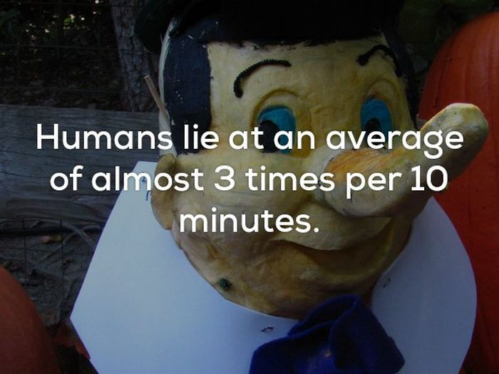 Scary Facts (22 pics)