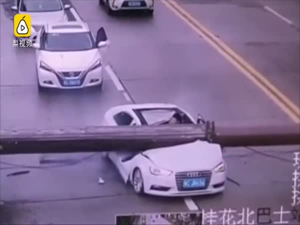 Driver Miraculously Survived After His Car Smashed by Falling Crane on Road