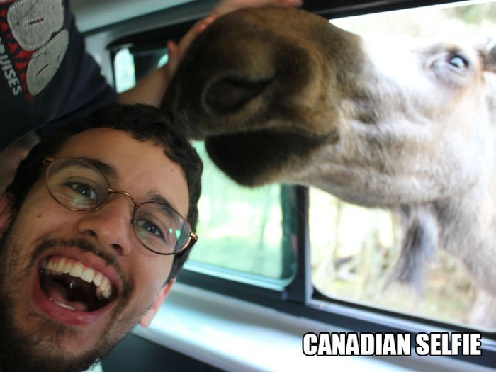 Meanwhile in Canada (17 pics)