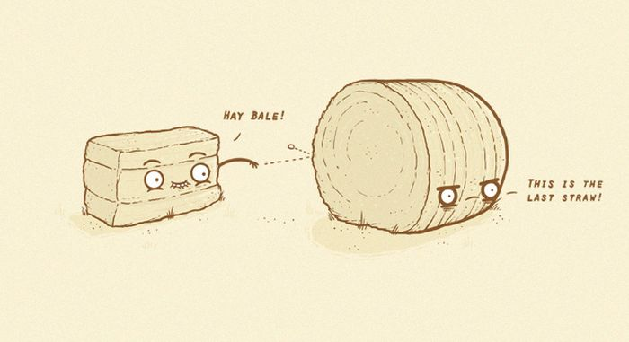 Funny Illustrations by Randy Otter (14 pics)