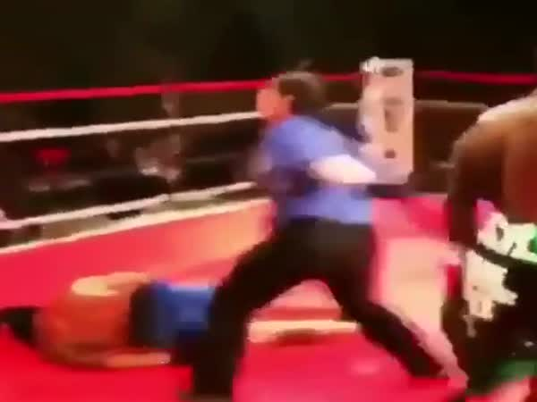 A Guy From The Crowd Thought He Had A Chance Against A Pro Boxer