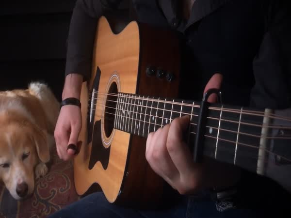 Game of Thrones Theme on Acoustic Guitar