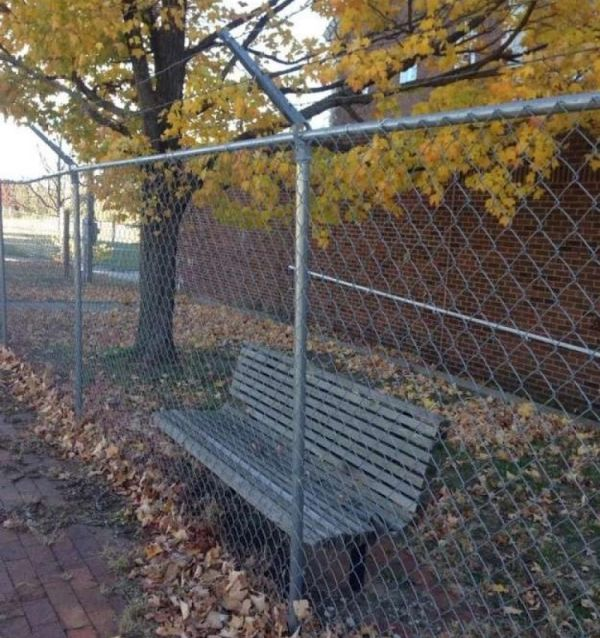 Useless Things (17 pics)