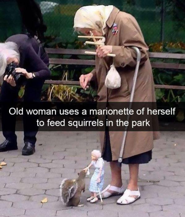 Funny Animal Snapchats (17 pics)