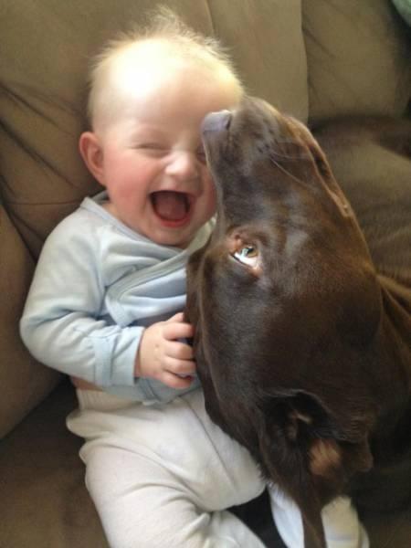 Happiness Has So Many Faces (26 pics)