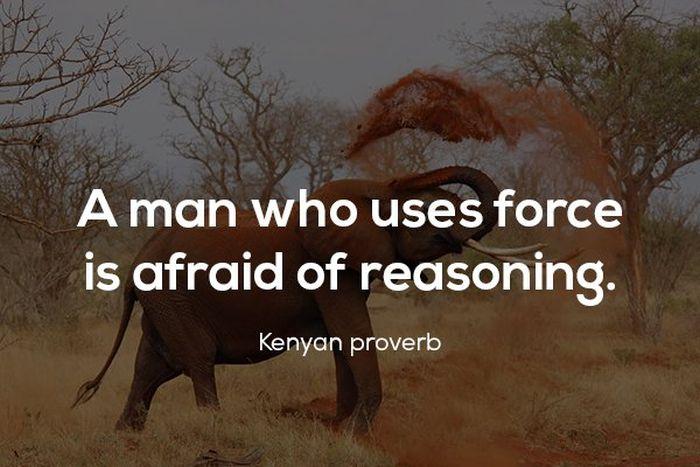 Proverbs (17 pics)