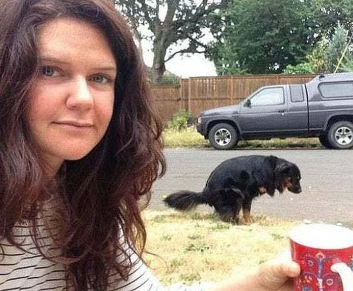 Inappropriate Selfies (16 pics)