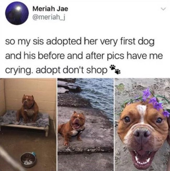 Everybody Needs To Smile (19 pics)