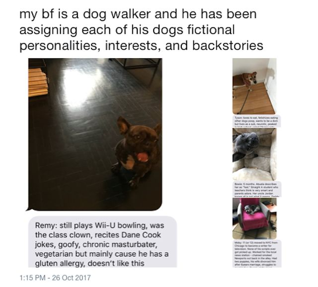 Dog Walker Assigns His Clients Some Fictional Backstories (9 pics)