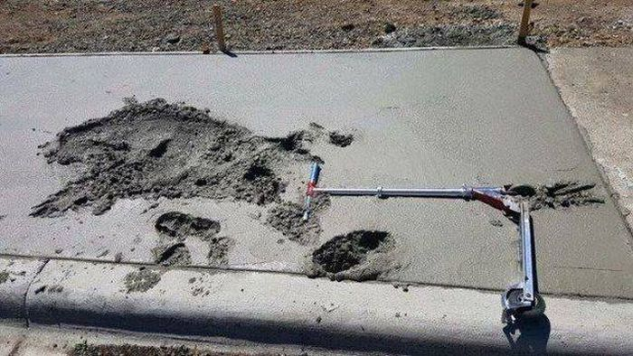 Selection Of Fails (35 pics)