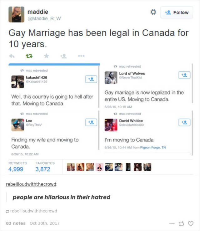 Canada Never Gets Enough Of Roasting USA (20 pics)
