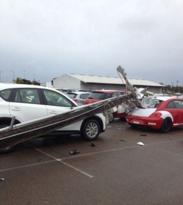 That'll Buff Out (30 pics)