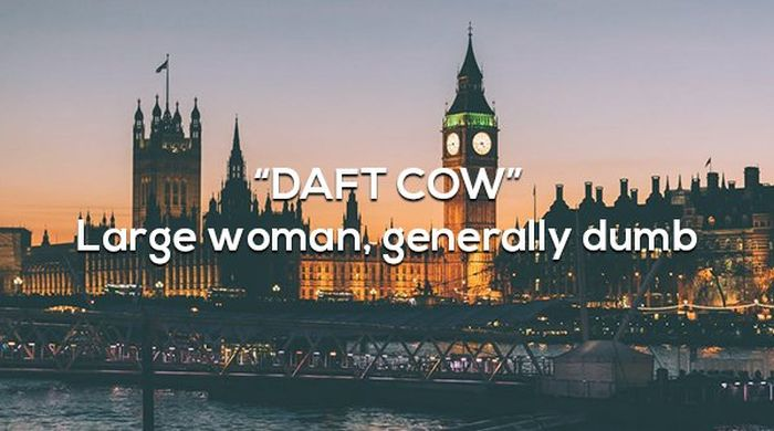 British Insults And Their Meanings (16 pics)