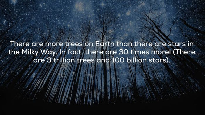 Interesting Facts & Stats (21 pics)