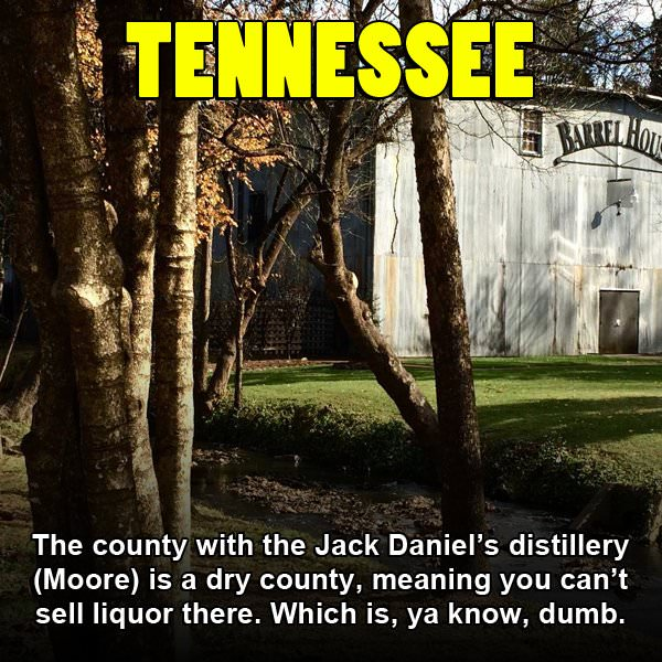 Funny Pics That Rip On Each US State (50 pics)