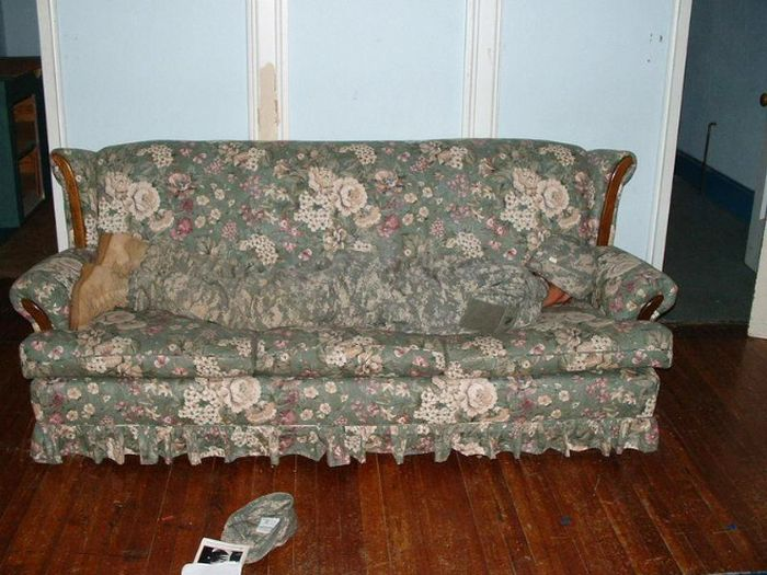 Accidental Camouflage (18 pics)