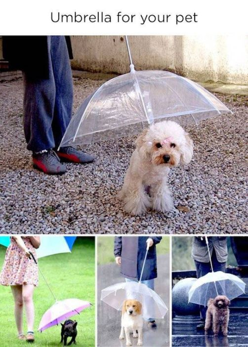 Great Inventions (25 pics)