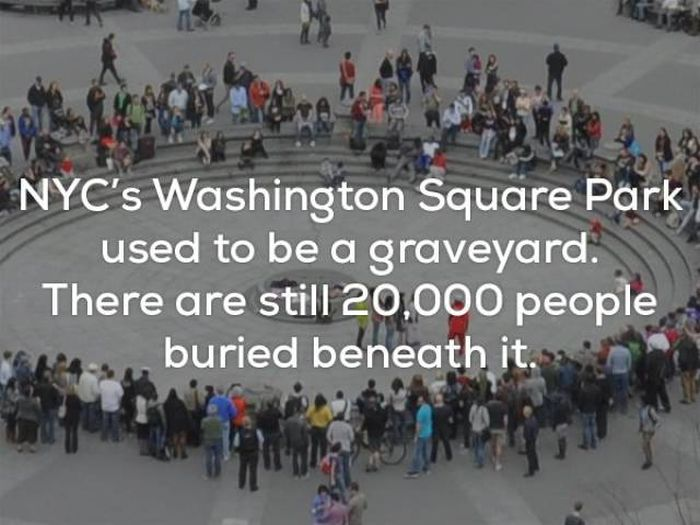 Awful Facts (22 pics)