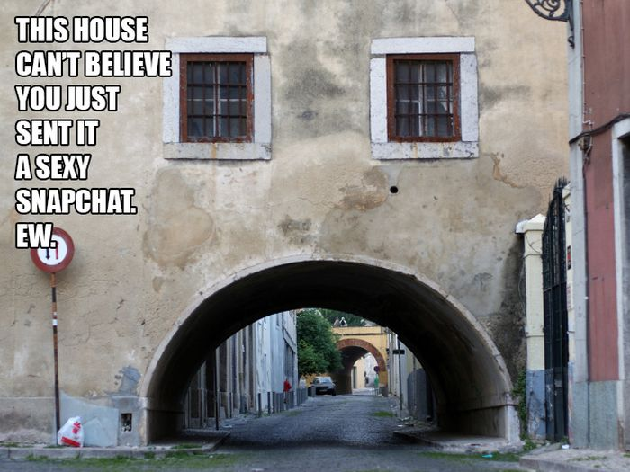 These Houses Can't Believe (17 pics)