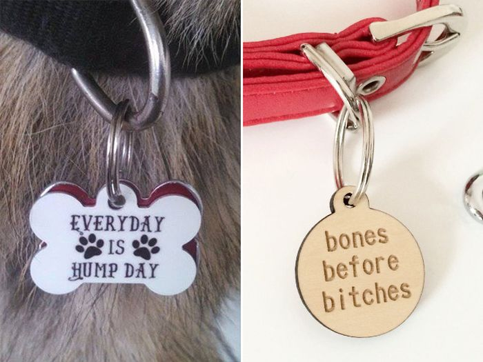 Funny Collar Tags For Pets (18 pics)