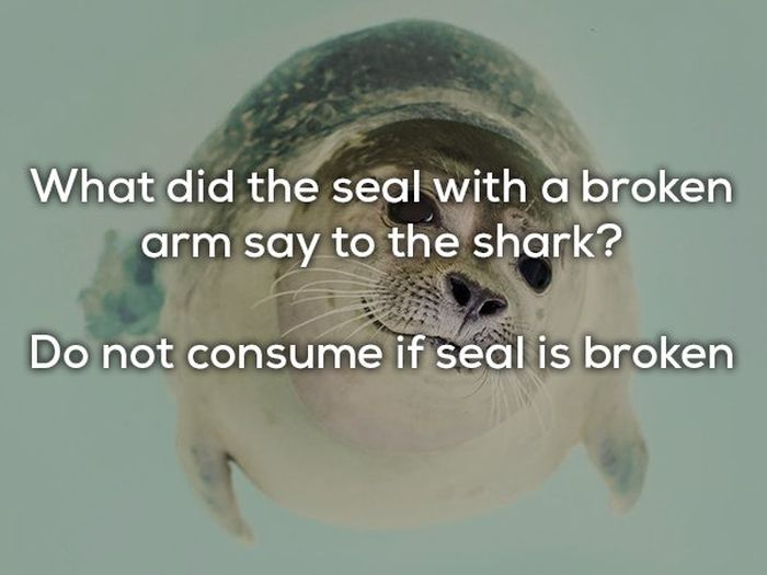 Dad Jokes (23 pics)