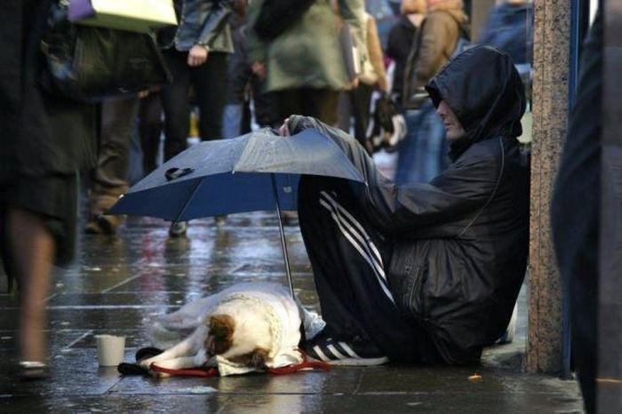 When A Picture Says More Than Just A Thousand Words (35 pics)