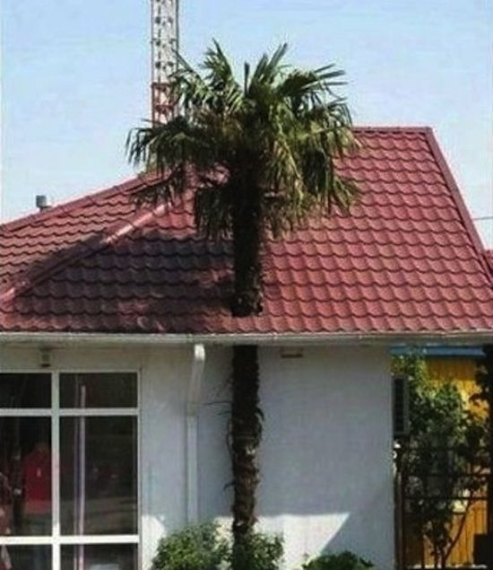 Building Like An Idiot (26 pics)