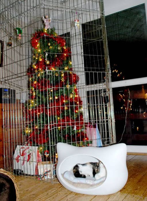 How To Save Your Christmas From Your Own Pets (36 pics)