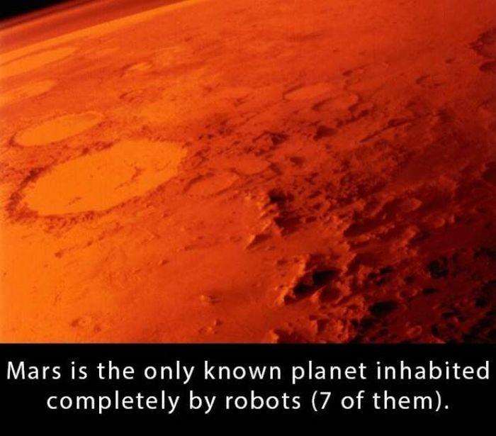 Interesting Facts (21 pics)