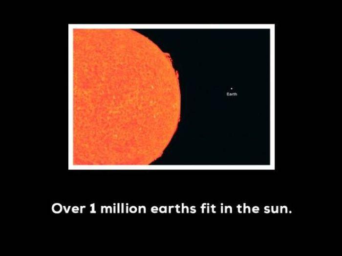 Unbelievable Facts (14 pics)