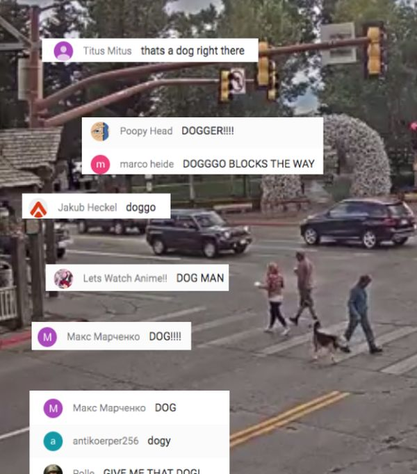 People Love Watching This Live Feed Of Jackson Hole's Town Square (13 pics)