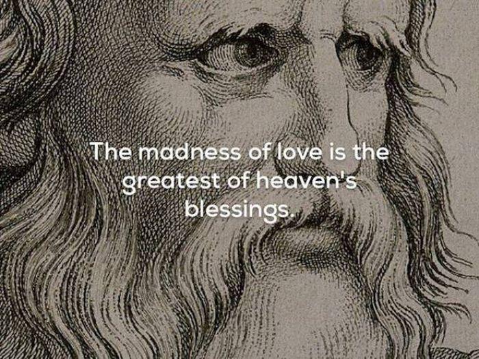 Plato's Quotes (17 pics)