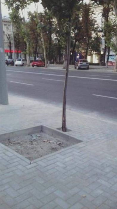 You Had One Job But Failed (55 pics)