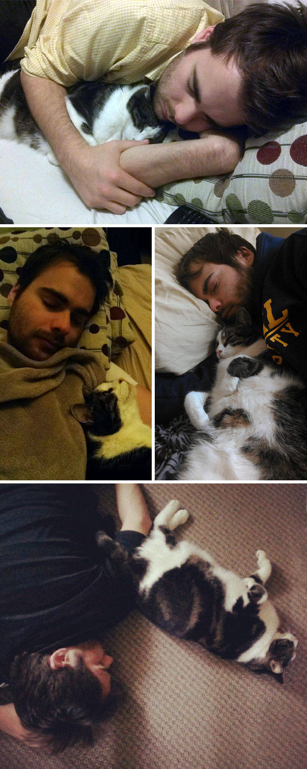 Be Careful, Or Your Pet Might Steal Your Partner (39 pics)