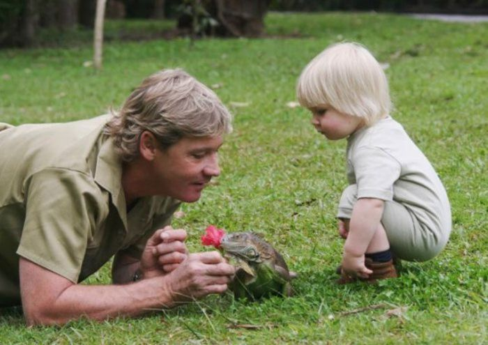 Steve's Son Irwin Followed In The Footsteps Of His Father (25 pics)